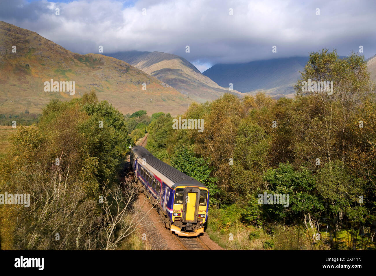 156 First Scotrail Sprinter unit, Loch Aweside. - Stock Image