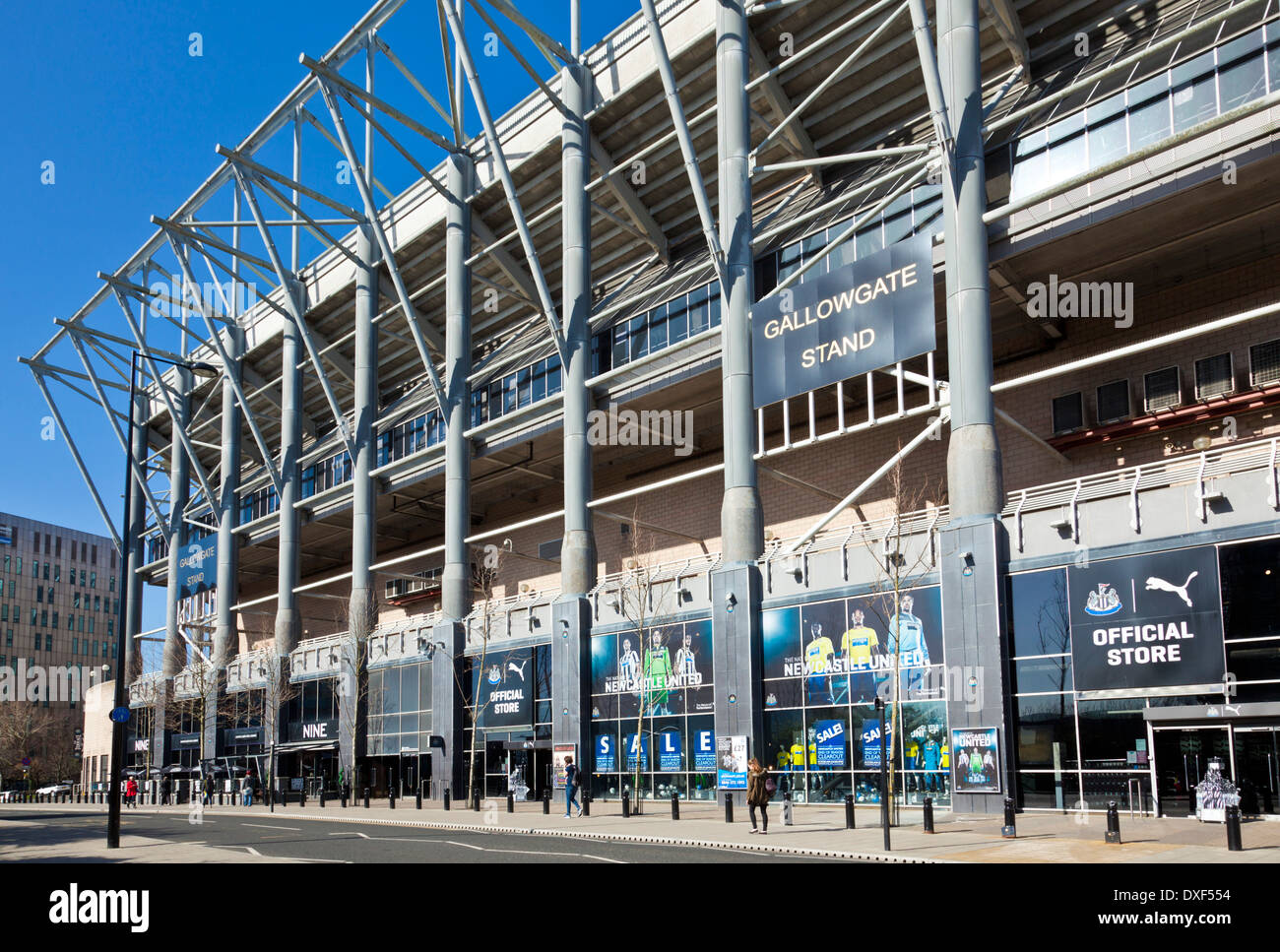 St James' Park football stadium home of Newcastle United Football club newcastle upon tyne tyneside england - Stock Image