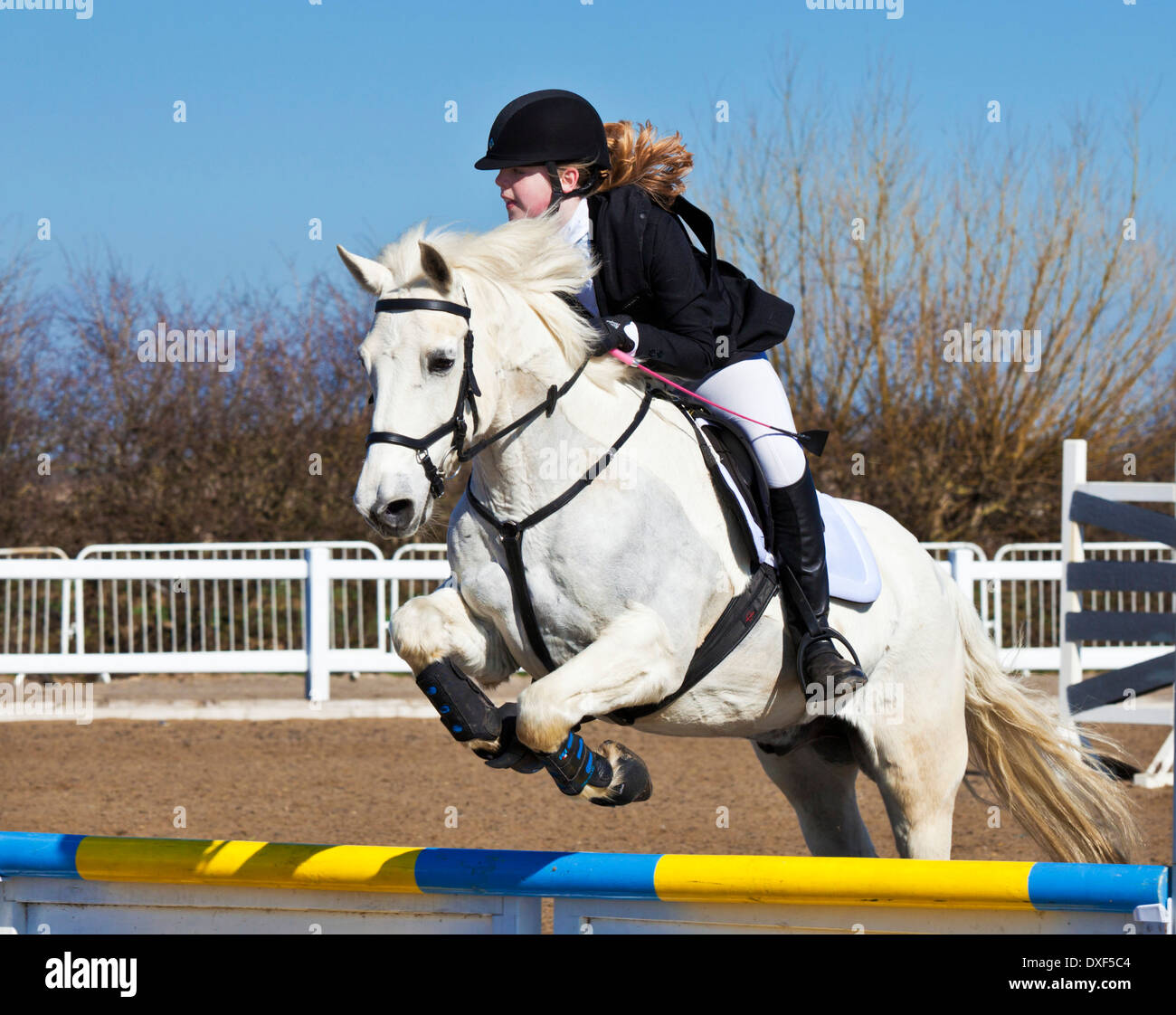 Young girl jumping a white horse pony over a jump at a showjumping event horse riding - Stock Image
