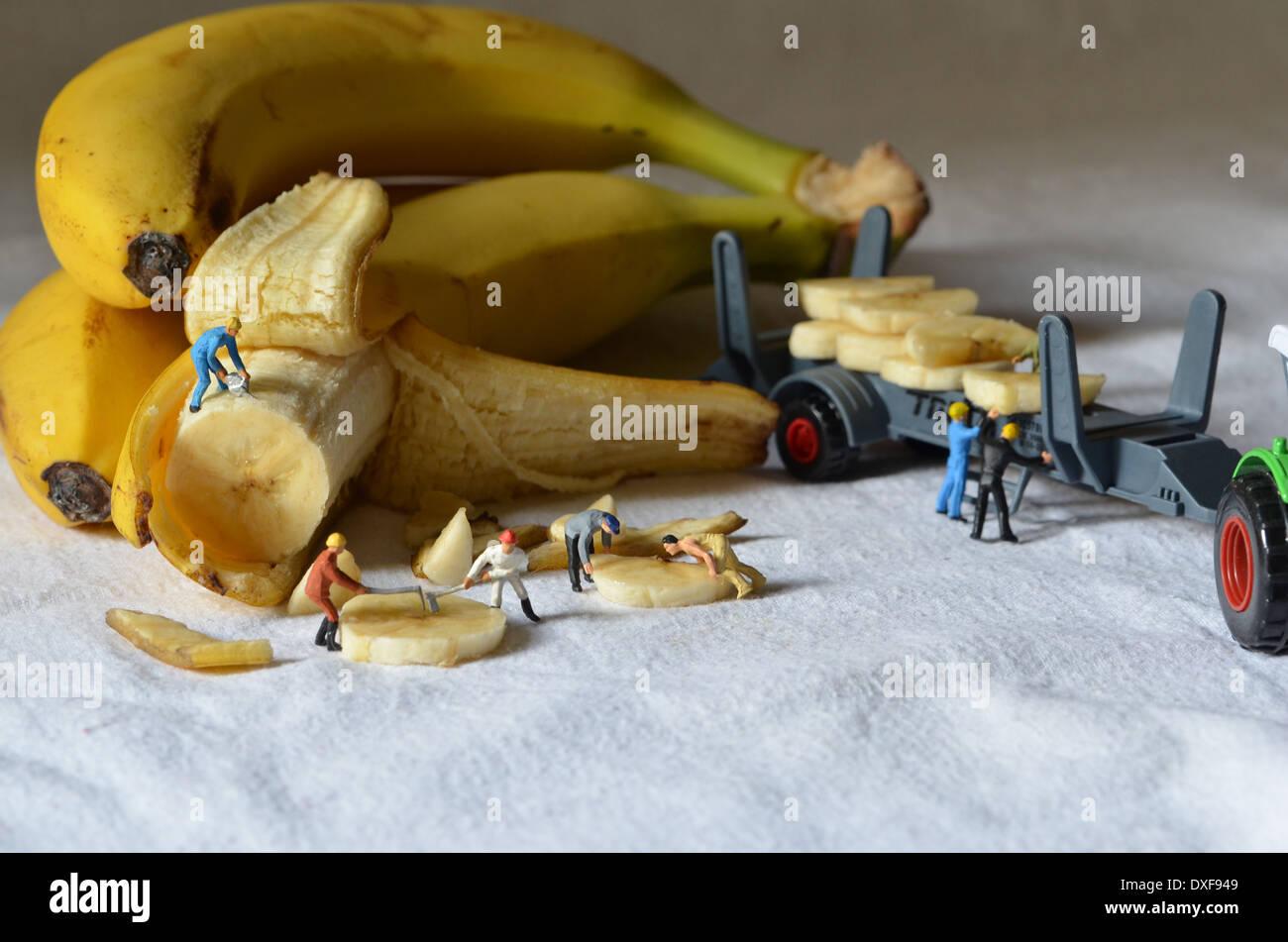 Banana mine Stock Photo