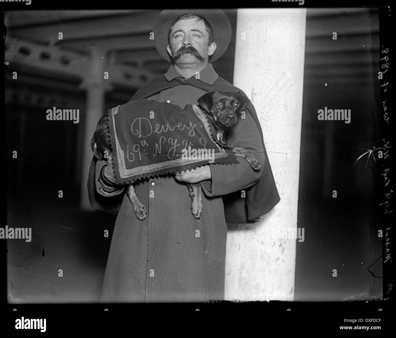 Spanish American War, 69th Regiment Mascot - Stock Image