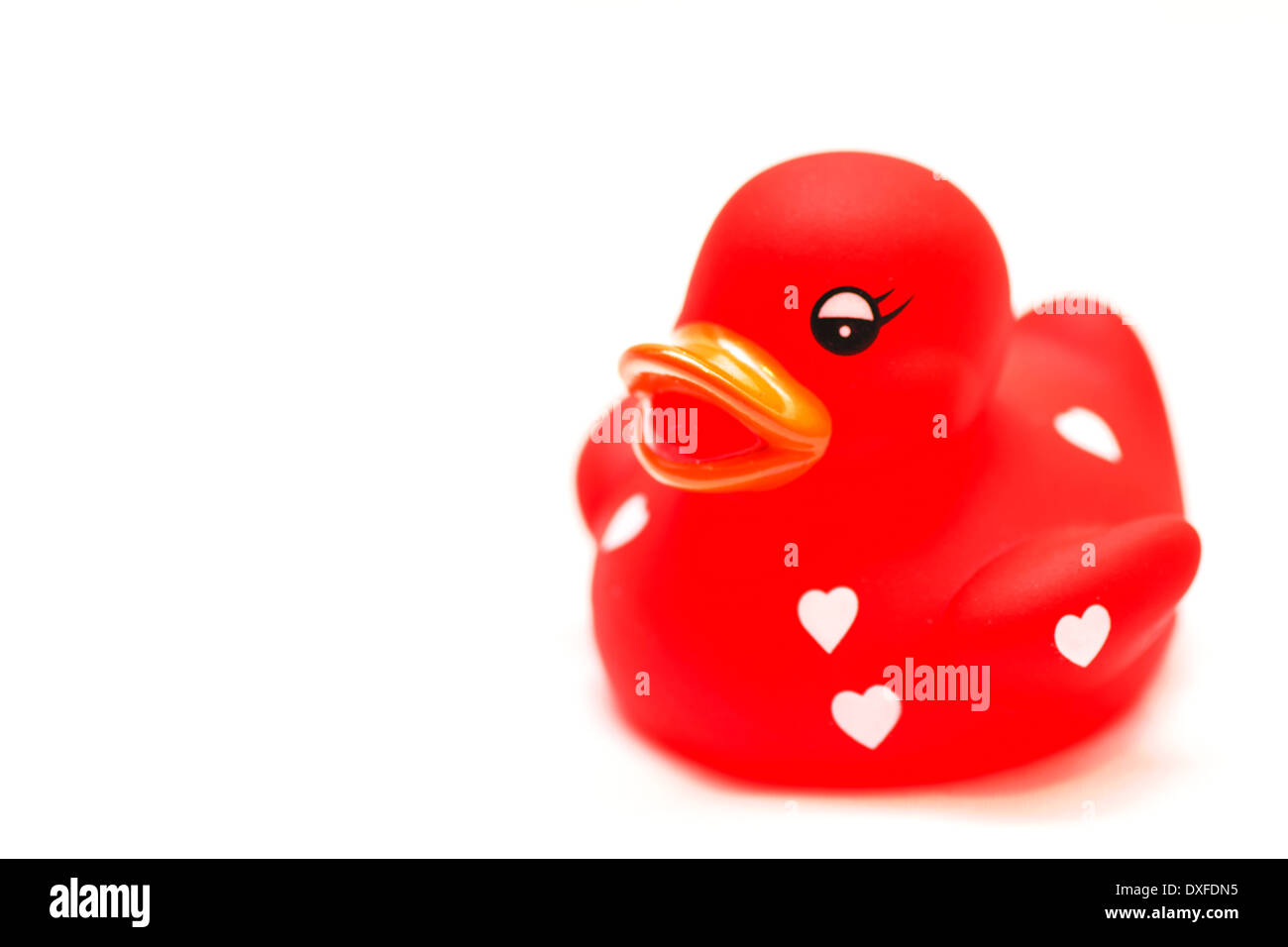 Red Rubber Duck - Stock Image
