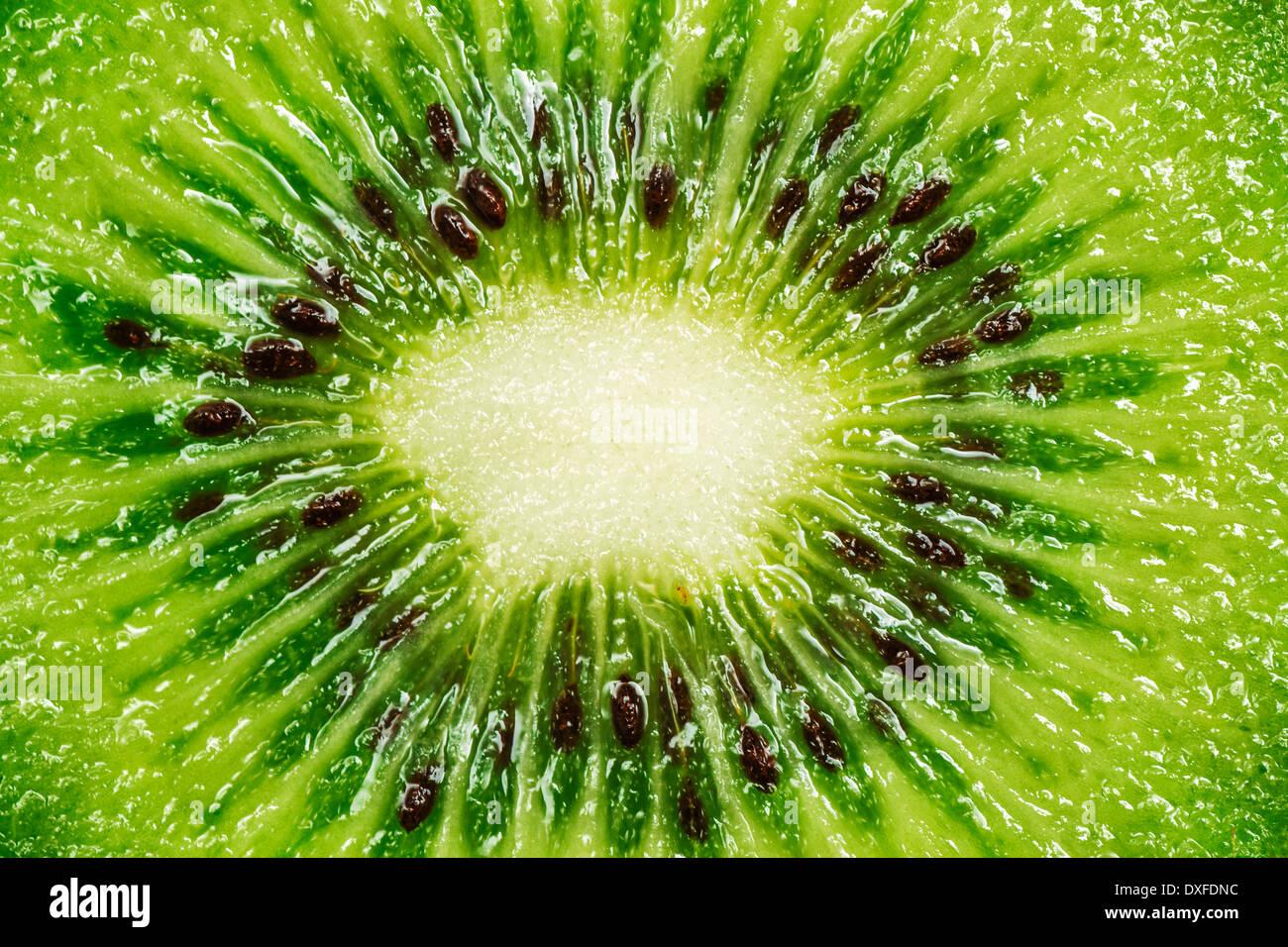 Kiwi Macro - Stock Image