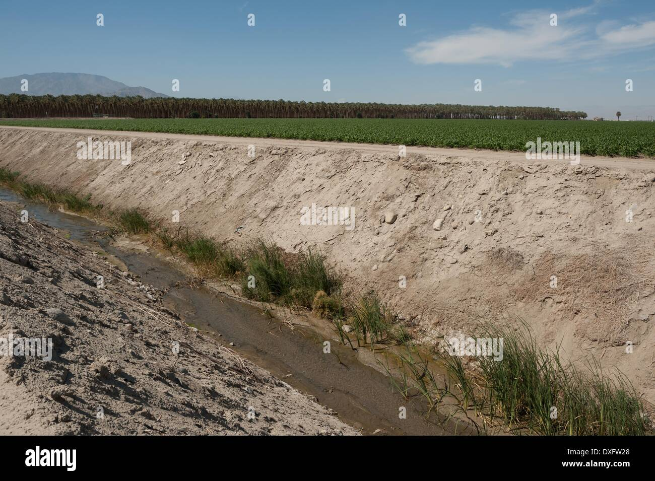 Mecca, California, USA. 21st Mar, 2014. A canal for irrigation runoff moves toward the Salton Sea in Imperial County, Stock Photo