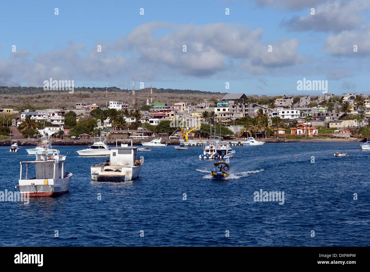 puerto baquerizo moreno chatrooms Book your tickets online for the top things to do in puerto baquerizo moreno,  ecuador on tripadvisor: see 3234 traveler reviews and photos of puerto  baquerizo.