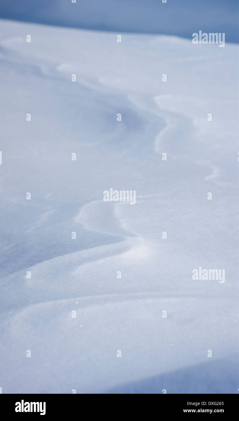 Snow Drift - Stock Image