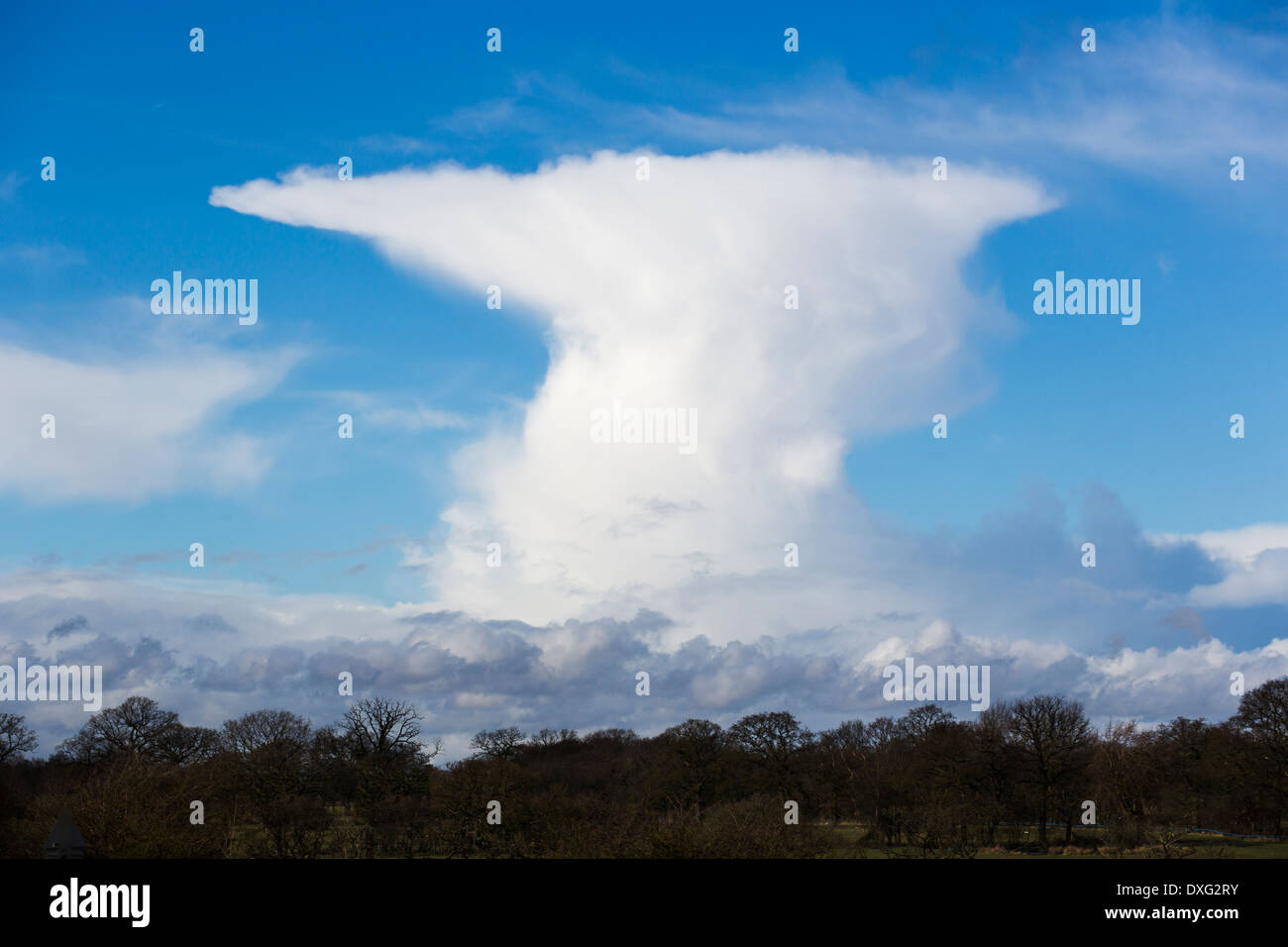 A typical cumulonimbus or anvil cloud over Birmingham, UK Stock Photo