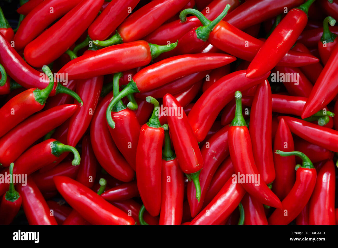Full Frame Of Red Chilli Peppers - Stock Image