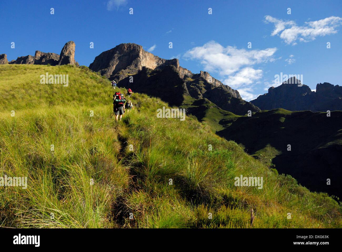 Hikers below The Molar, ascending Leslie's Pass, Drakensberg mountains. - Stock Image