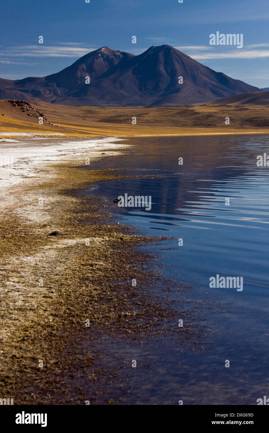 Altiplanic Lagoon in the high Andes Mountains in the Atacama Desert in northern Chile Stock Photo