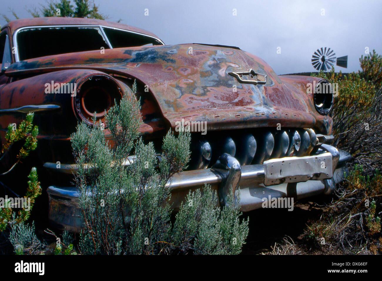 Old abandonned scrap 1951 De Soto, Compassberg Farm, Great Karoo, Eastern Cape - Stock Image