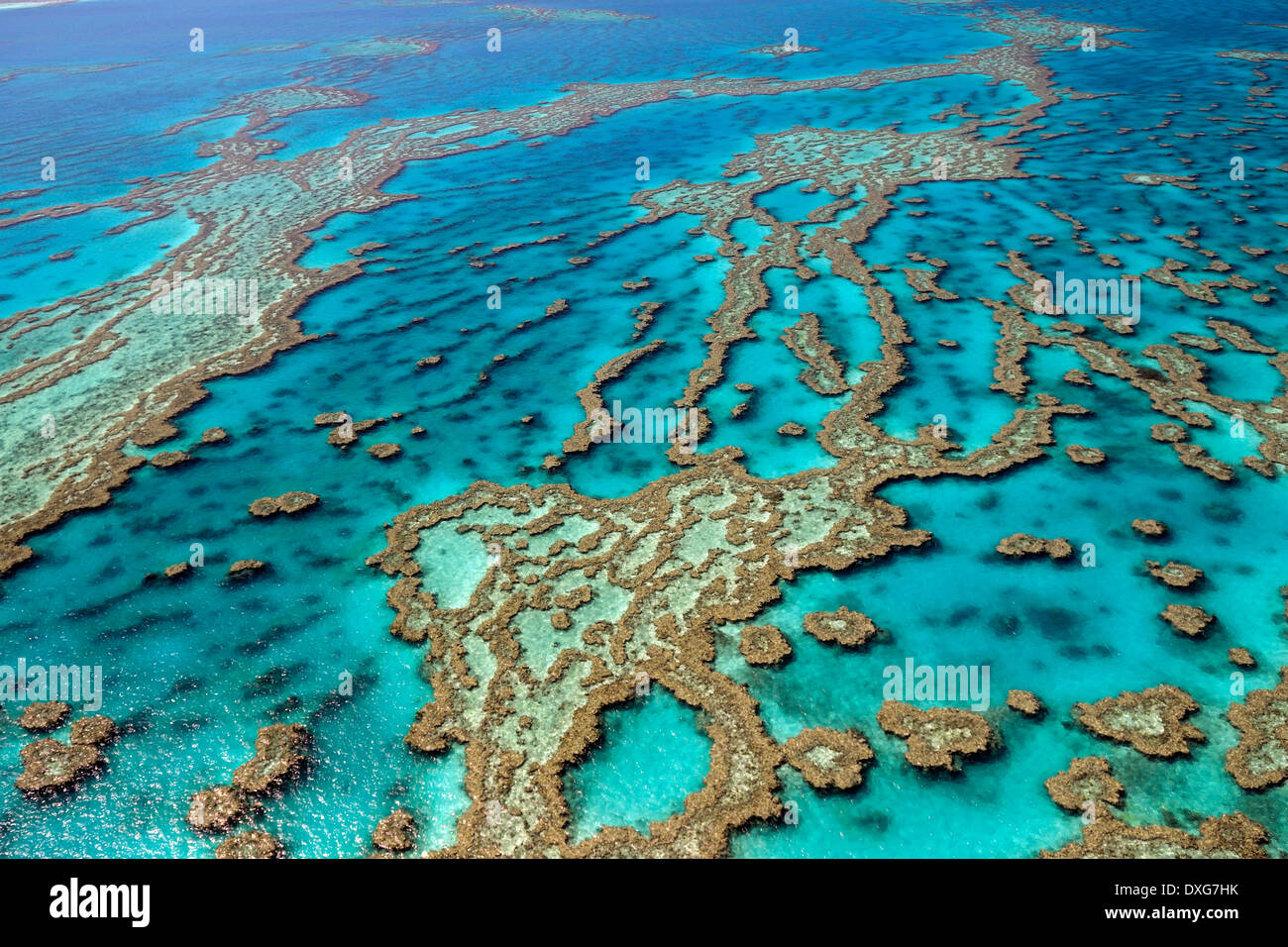 Reefs and atolls, Great Barrier Reef, Queensland, Australia - Stock Image
