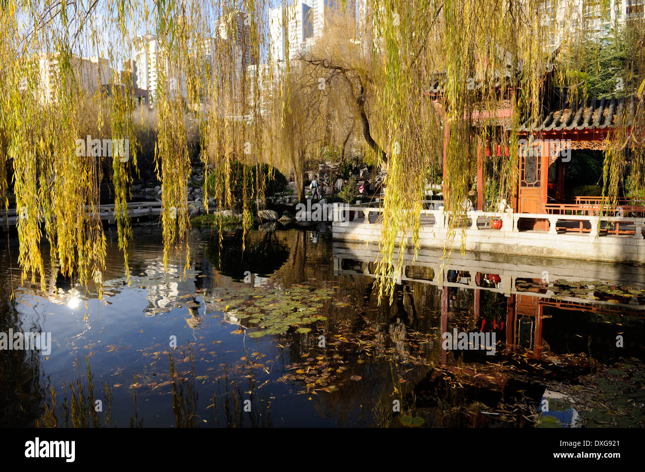 Chinese Garden Sydney Stock Photos & Chinese Garden Sydney Stock ...