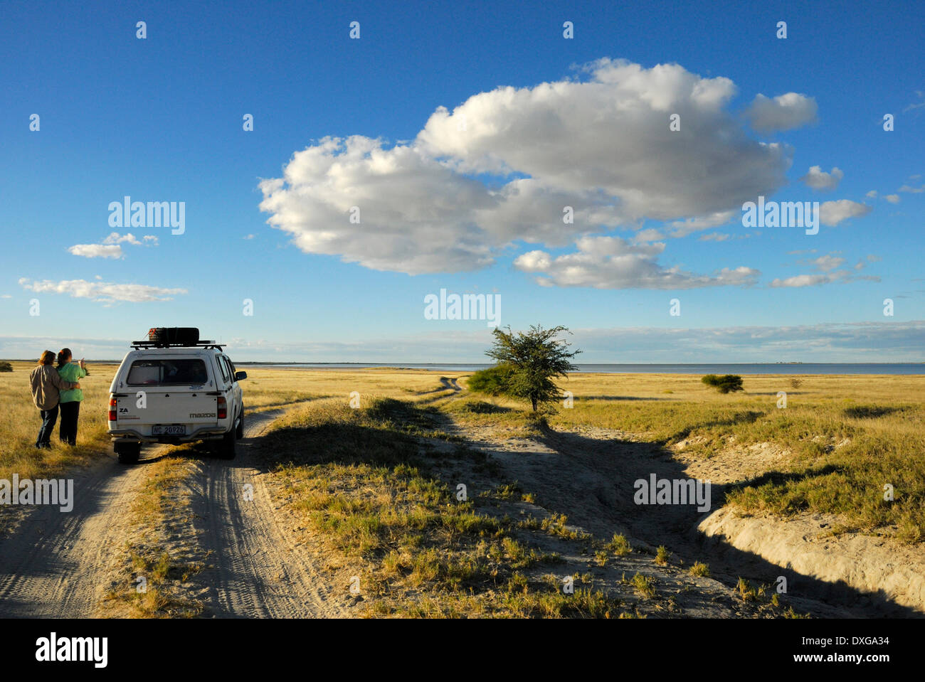 The track at the edge of the flooded Sowa Pan in the Makgadikgadi Pans, Botswana. - Stock Image