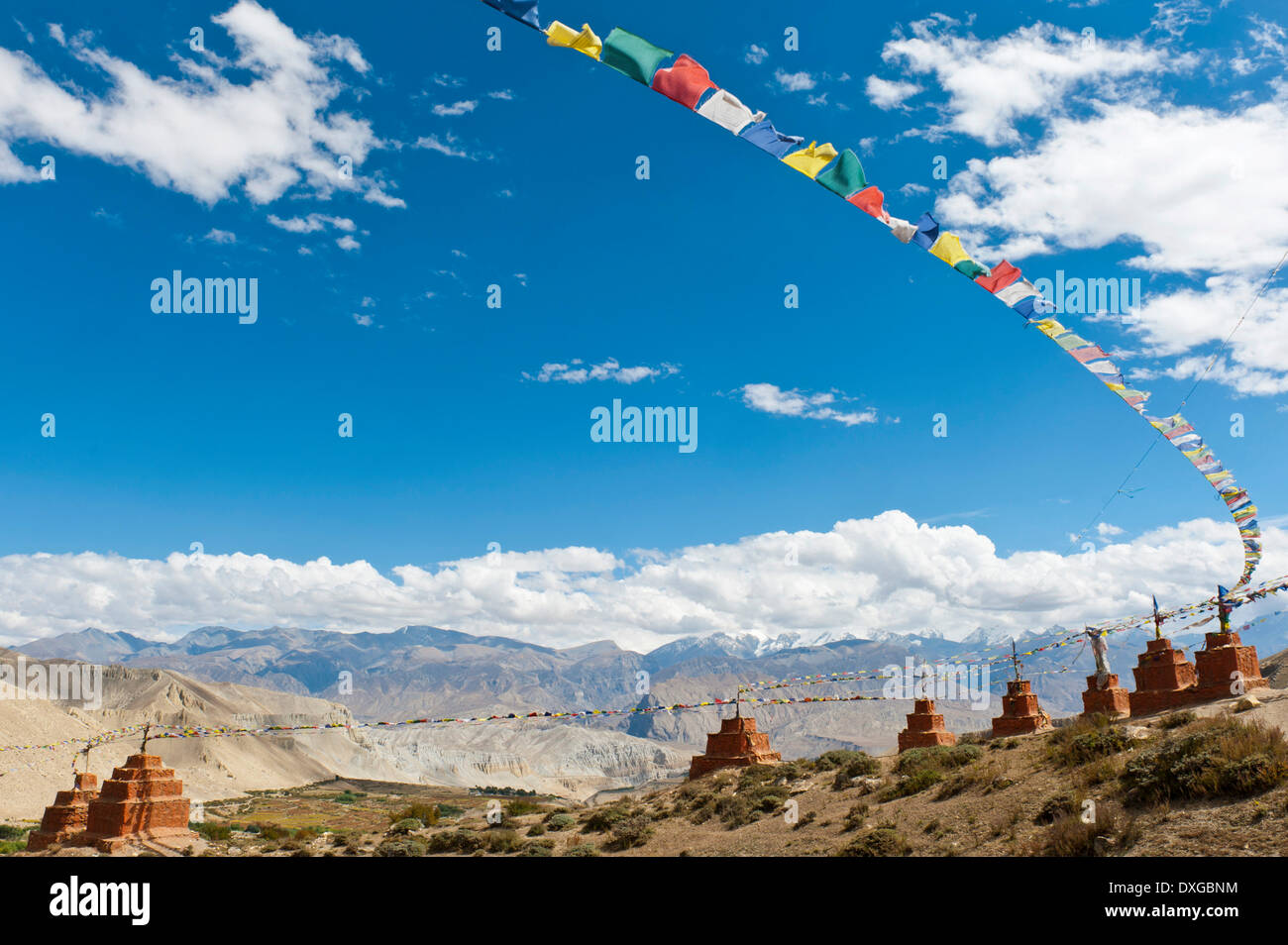 Stupas and prayer flags, chortens in a row in a mountain landscape, Ghar Gompa Monastery, Lo Gekar, Upper Mustang, Lo, Himalayas - Stock Image