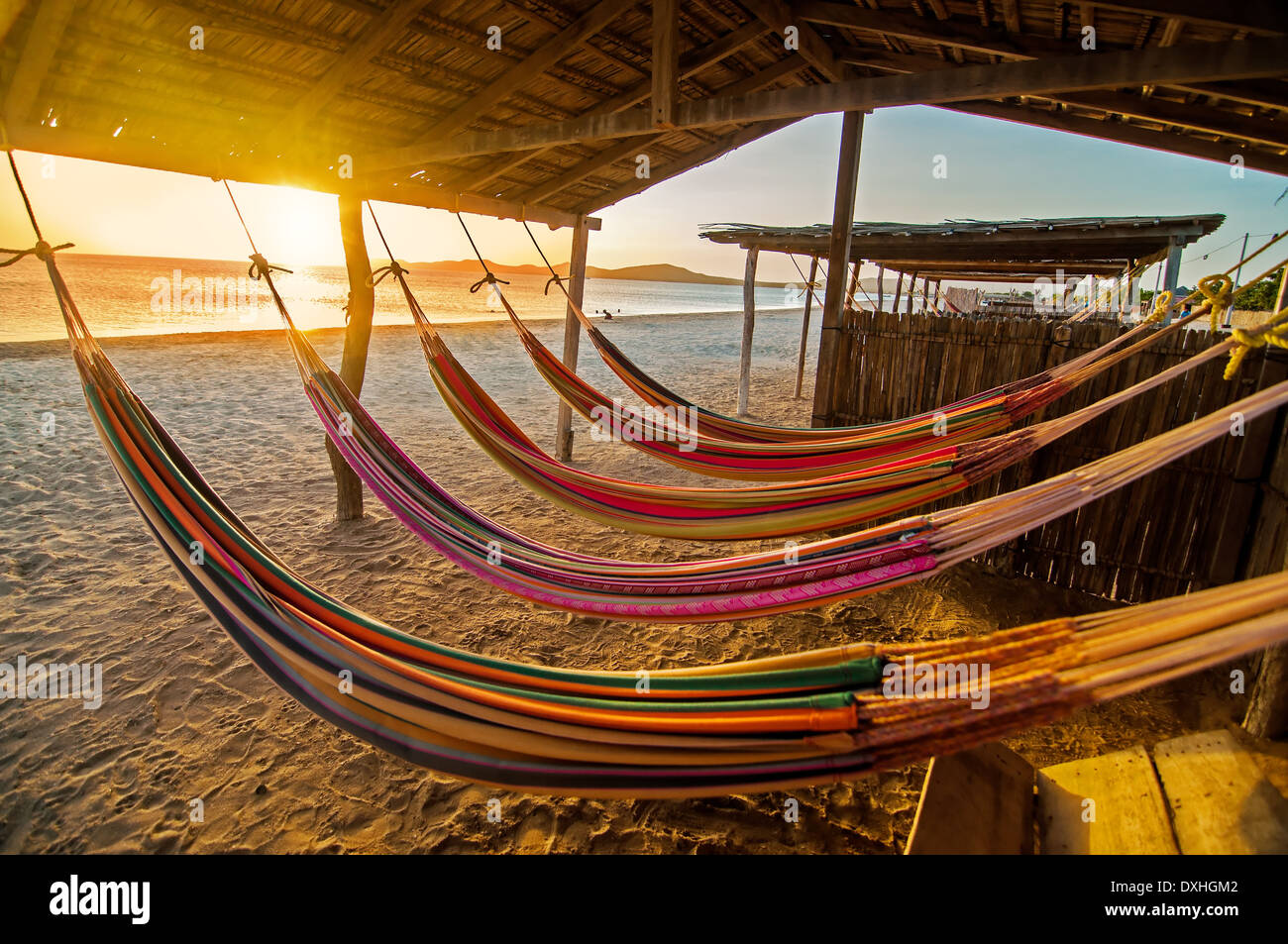 Hammocks on a beach at sunset. - Stock Image