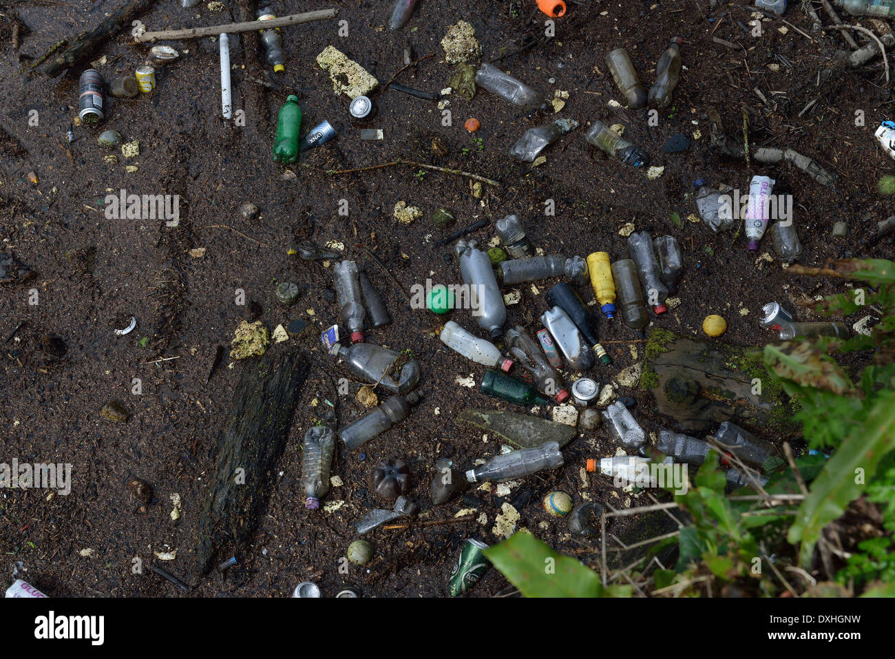 Single-use plastic products dumped by the side of a river - Stock Image
