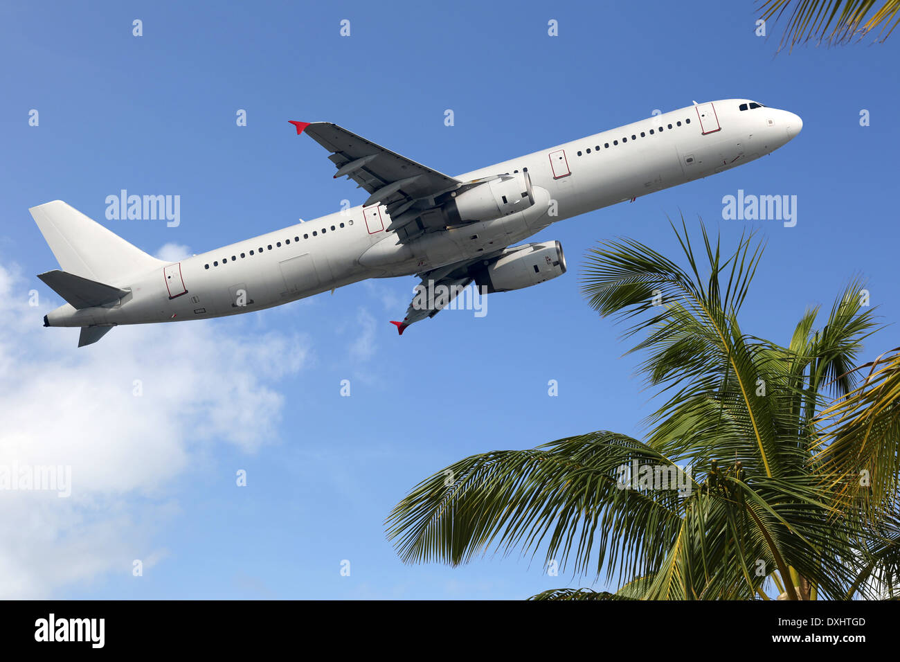 An Airplane taking off between palm trees into vacation during a journey - Stock Image