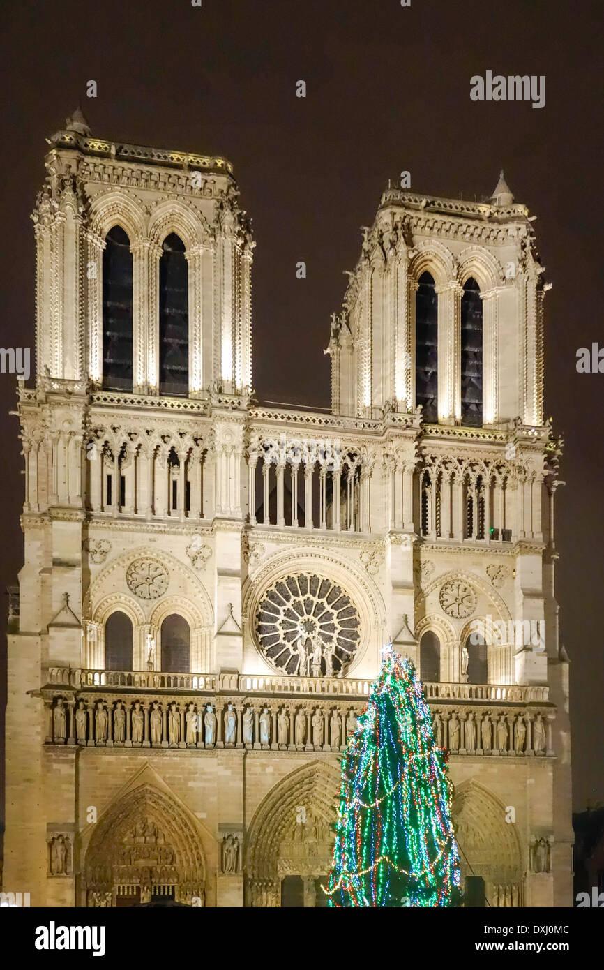 Christmas tree in front of Notre Dame de Paris, Paris, France Stock ...