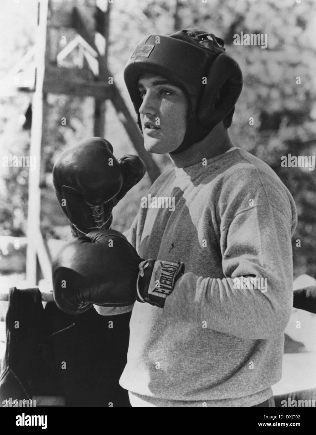 KID GALAHAD (US1962) ELVIS PRESLEY - Stock Image