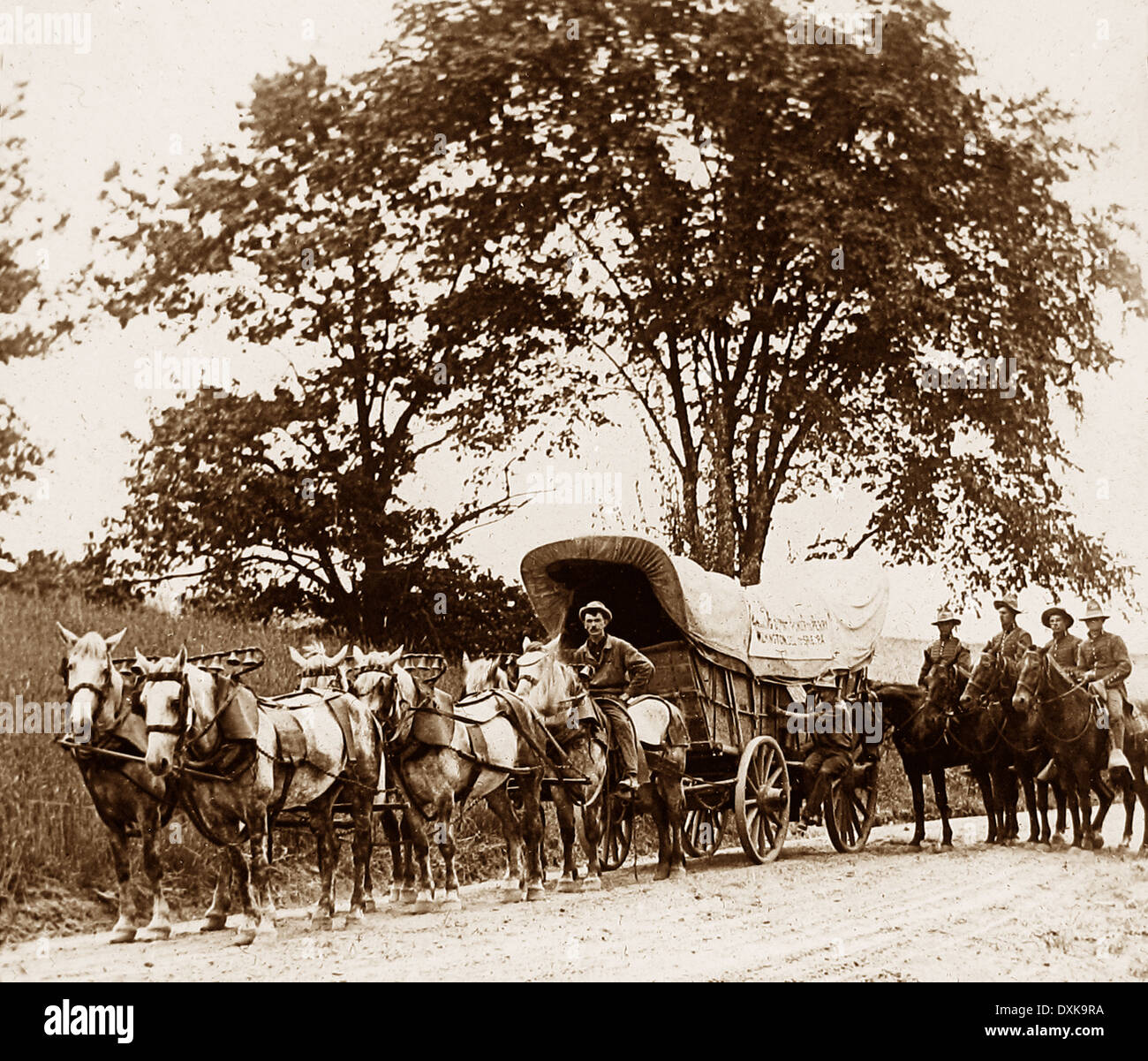 Ammunition wagon on its way to Admiral Ferry, Lake Erie, USA early 1900s - Stock Image