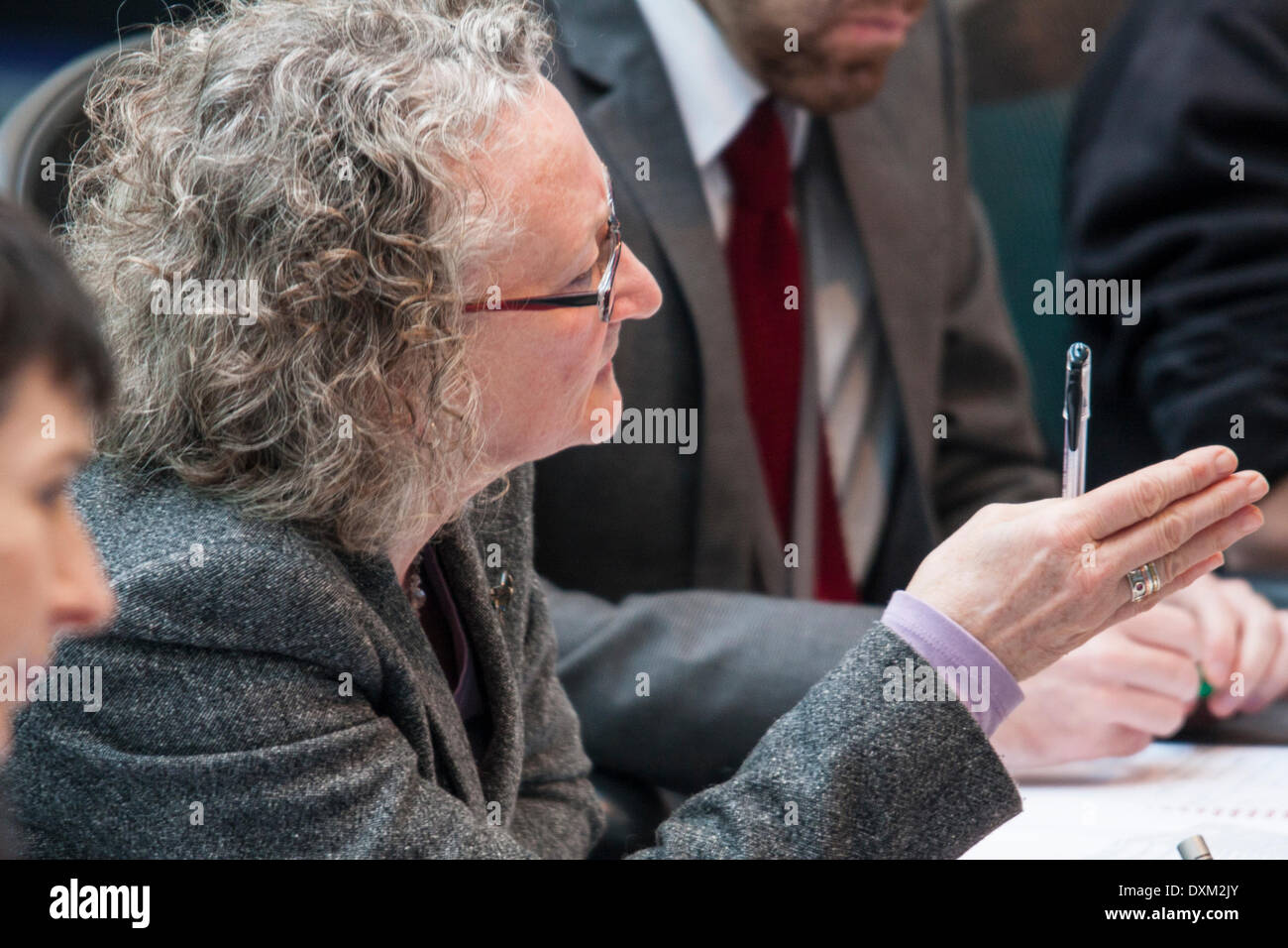 London, March 27th 2014. The Green Party's Jenny Jones, a member of the Police and Crime Committee of the London Assembly questions the Mayor of London on undercover policing and the governance of the Metropolitan Police. Credit:  Paul Davey/Alamy Live News - Stock Image