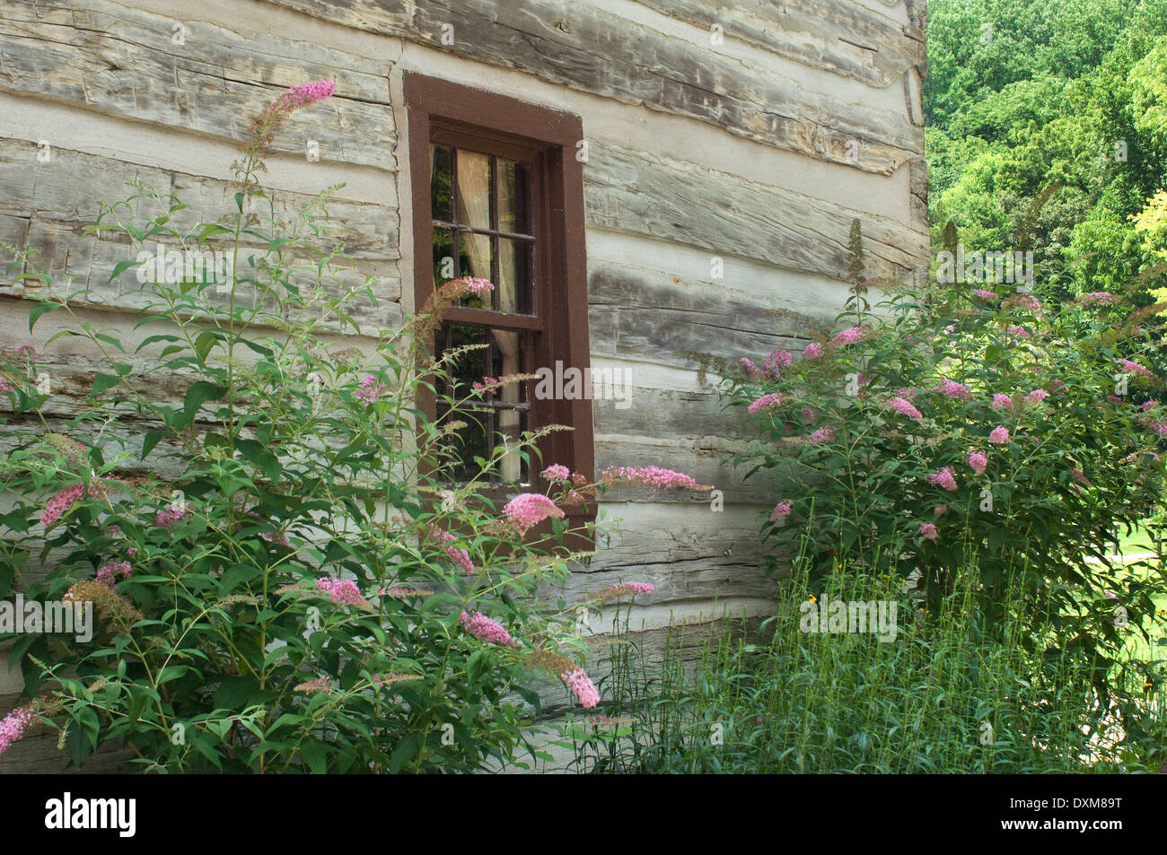Log home window in Spring Mill Pioneer Village, Indiana. Digital photograph Stock Photo