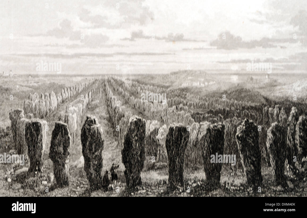 Carnac Alignments of Menhir or Standing Stone Carnac Brittany c1890. An Ancient Neolithic Monument - Stock Image