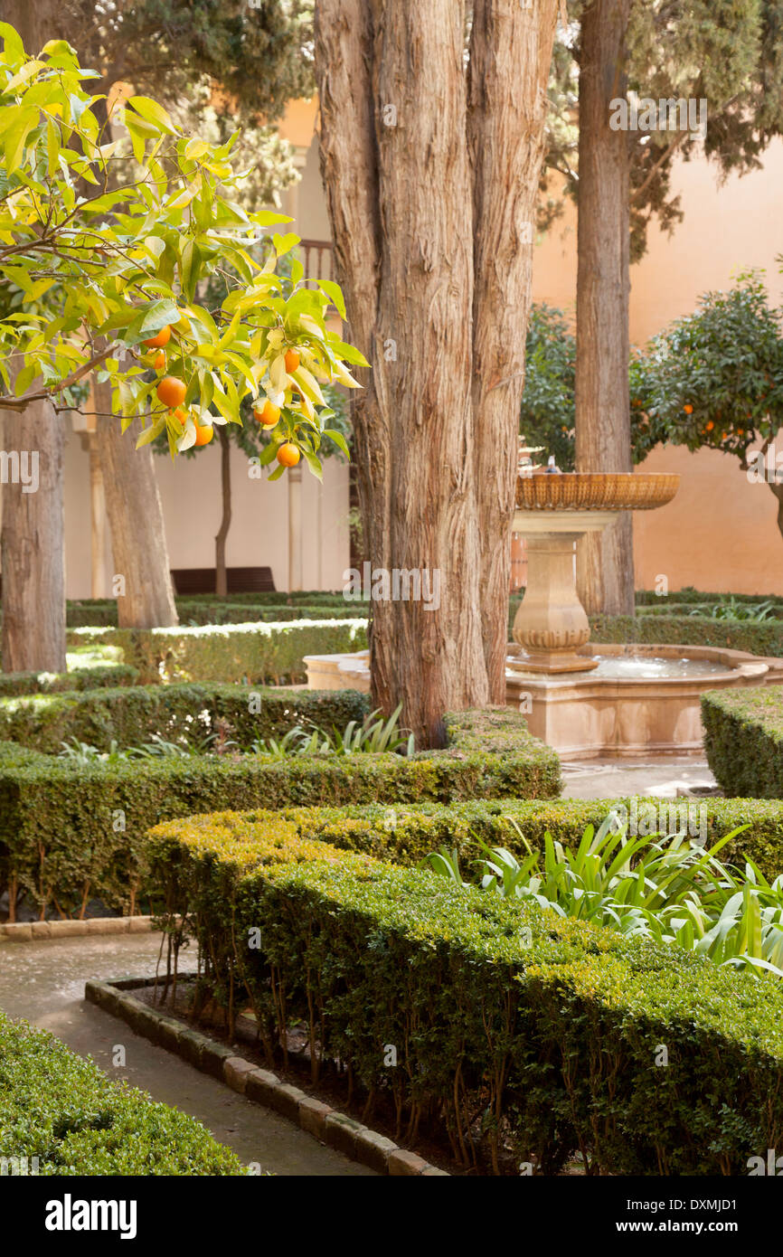 Gardens in the Nasrid Palaces, the Alhambra Palace, Granada Andalusia, Spain Europe - Stock Image