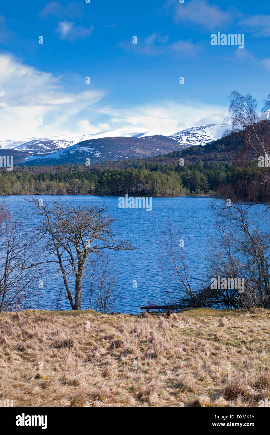 View across Loch an Eilein to Rothiemurchus pine forest and snow-covered Cairngorm summits, Cairngorms National Park Scotland UK - Stock Image