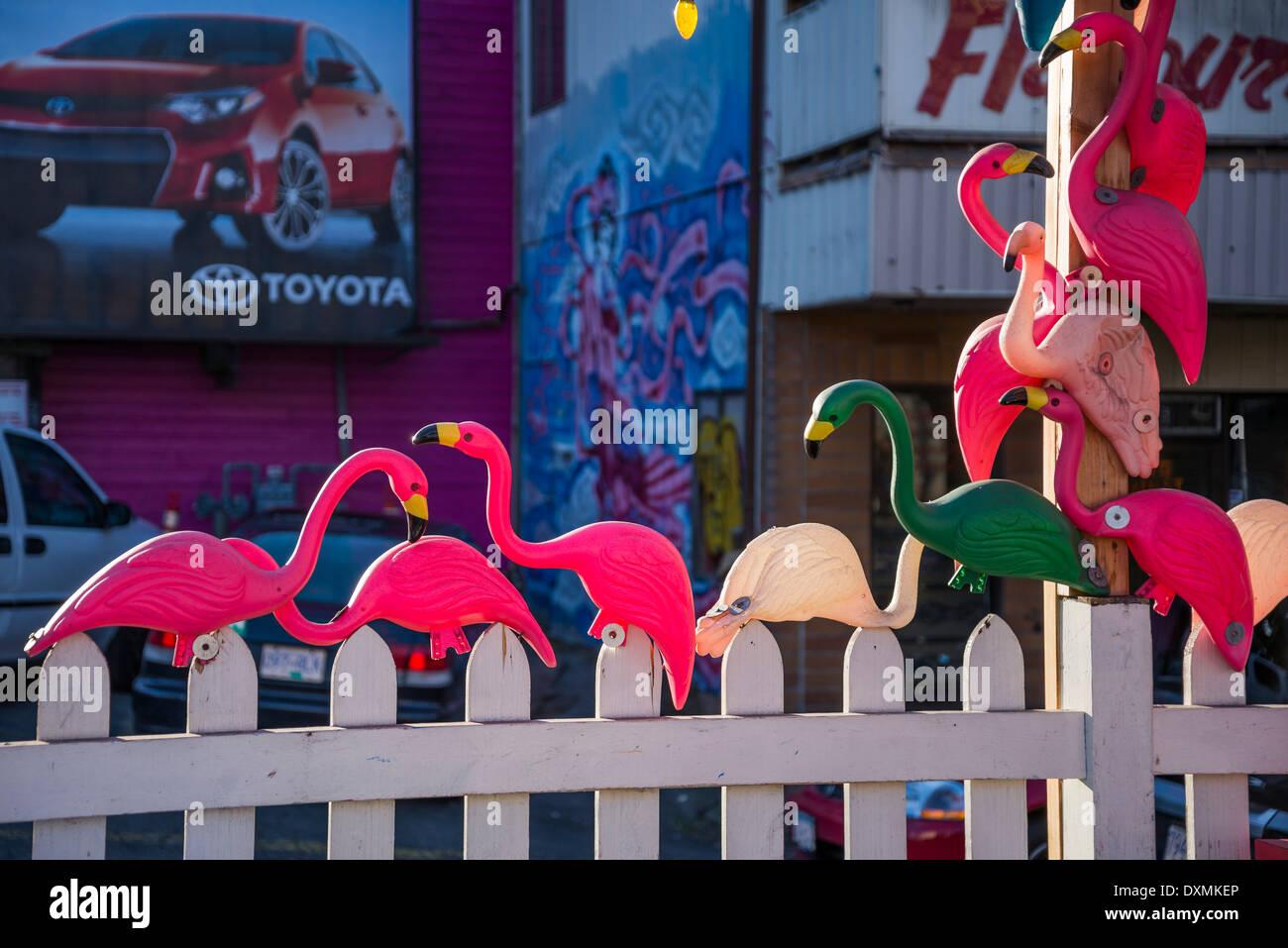 Plastic flamingos, Vancouver, British Columbia, Canada - Stock Image