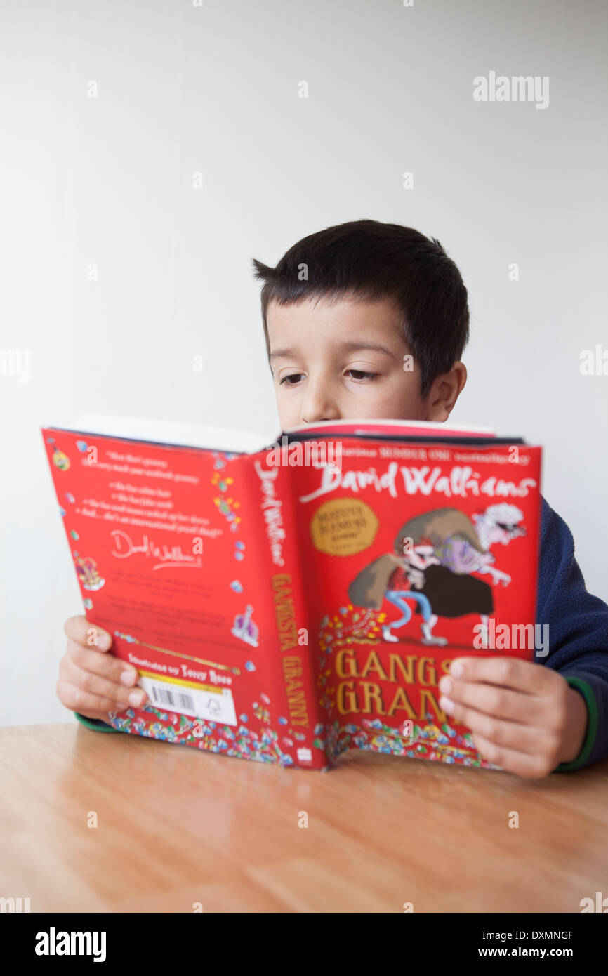 Boy reads a book - Stock Image
