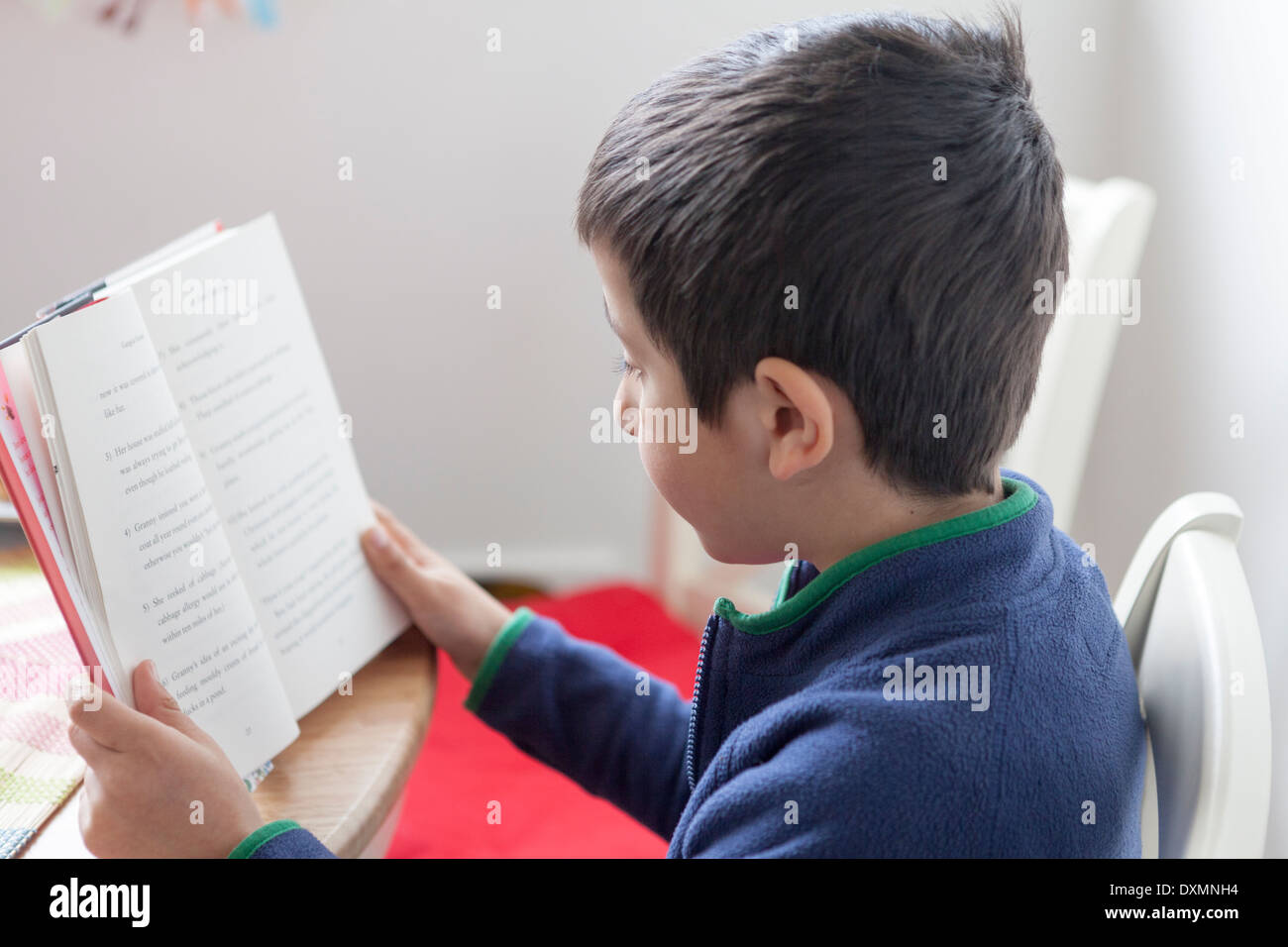 Young boy reads a book - Stock Image