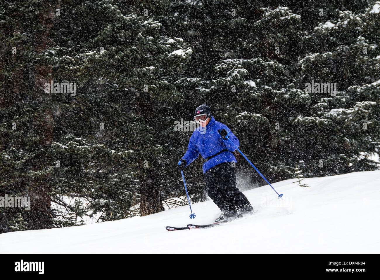 Mike Vining downhill skiing Clear Cut Run Copper Mountain Colorado USA - Stock Image