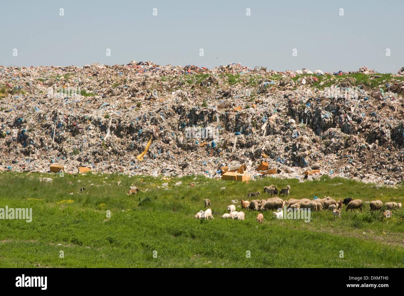 EUROPE/ASIA, Turkey, landfill site outside city next to the E80 motorway - Stock Image