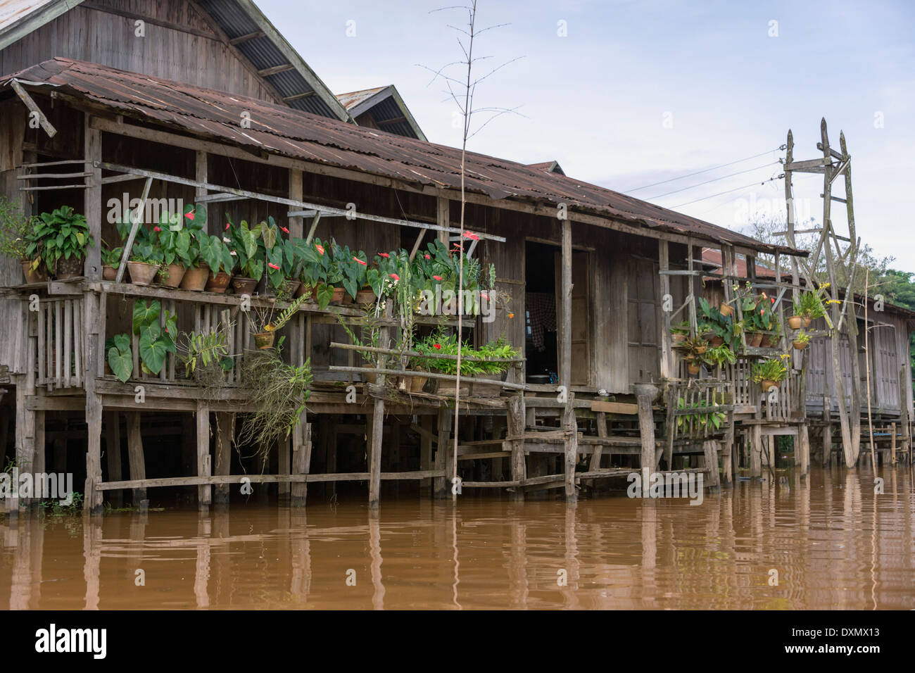 Stilt house with potted plants, Inle Lake, Myanmar - Stock Image