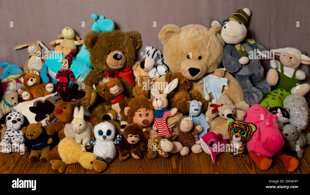 Collection Of Soft Toys Studio Shot Stock Photo 68084267 Alamy