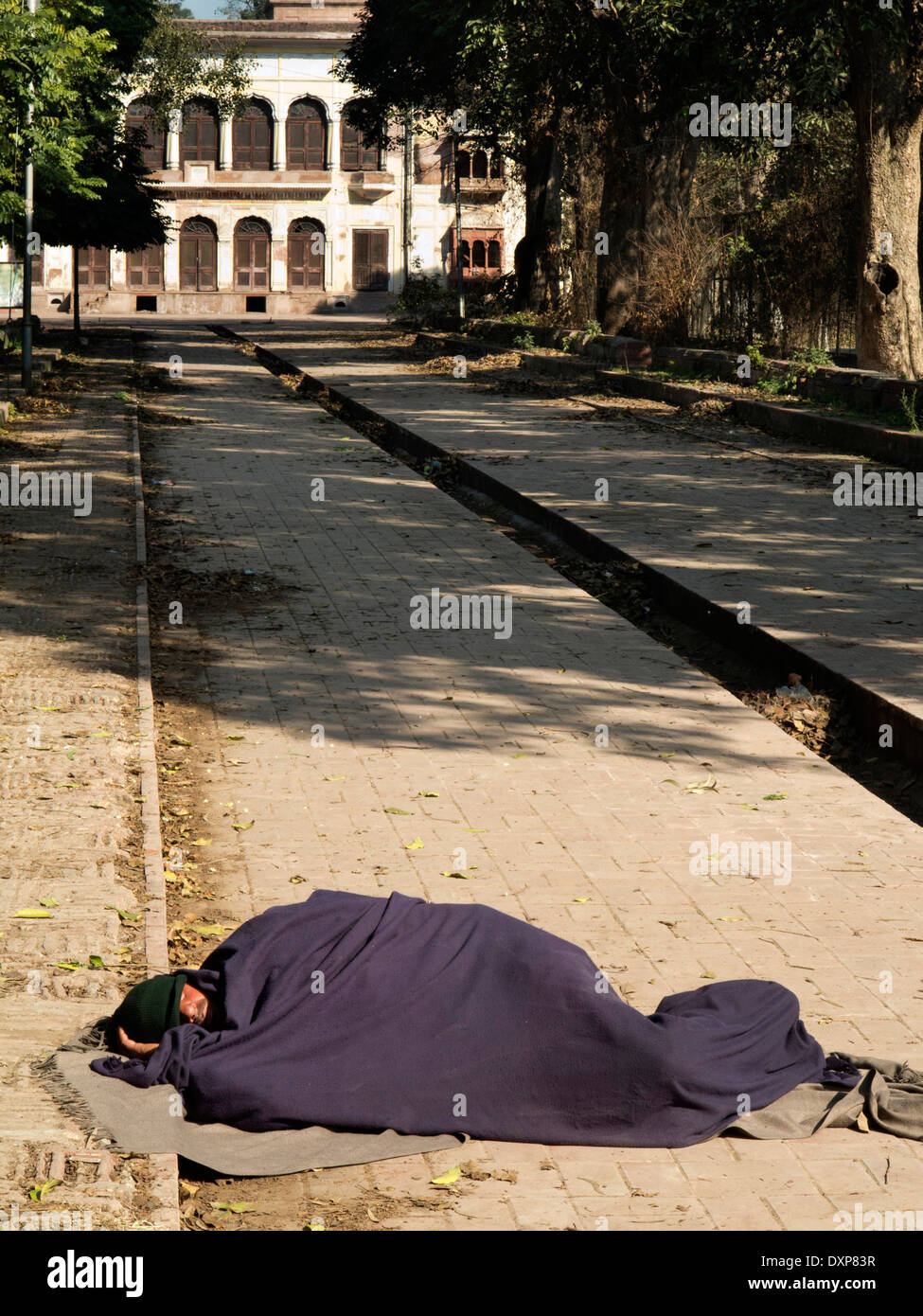 India, Punjab, Amritsar, Ram Bagh, Company Garden, homeless man asleep under blanket on road - Stock Image