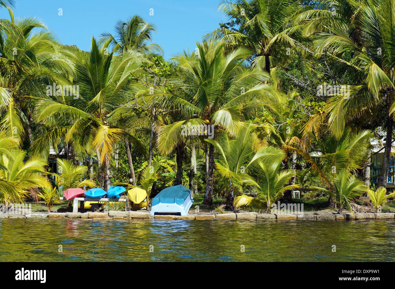 island palm trees tropical caribbean stock photos island palm trees tropical caribbean stock. Black Bedroom Furniture Sets. Home Design Ideas