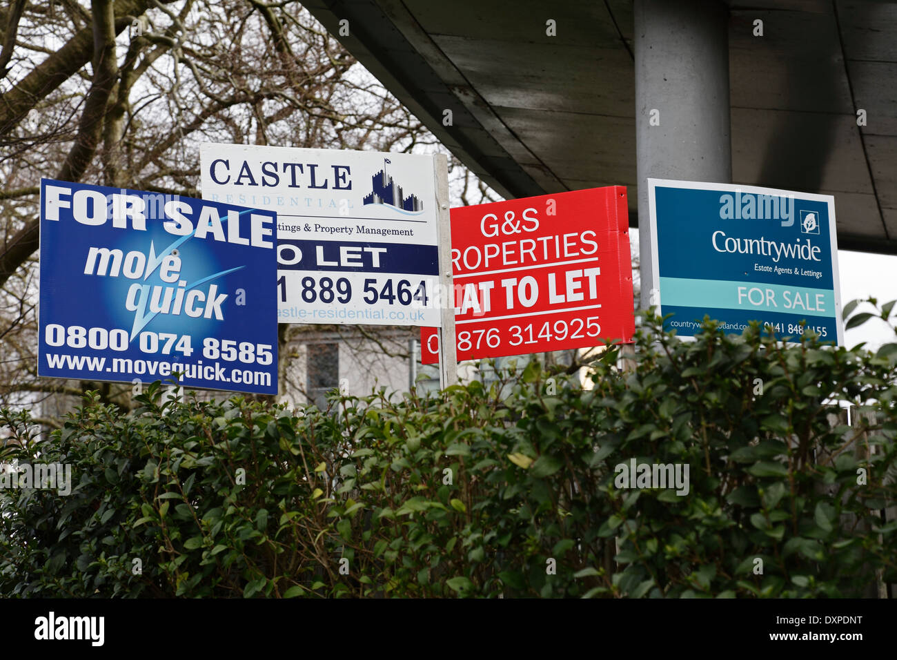 Estate Agent For Sale and To Let boards, Scotland, UK - Stock Image