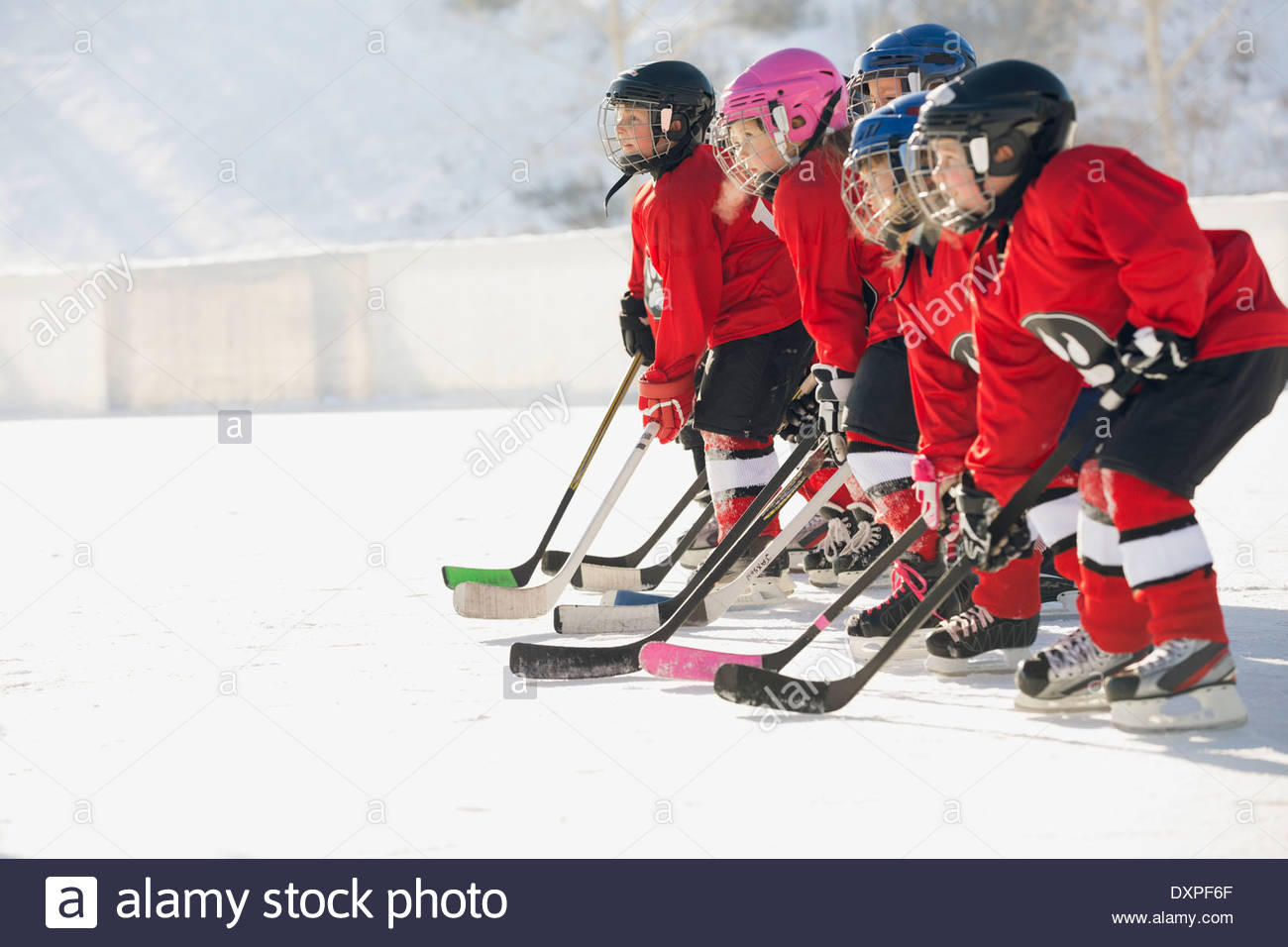 Ice hockey team standing in a row on ice rink - Stock Image