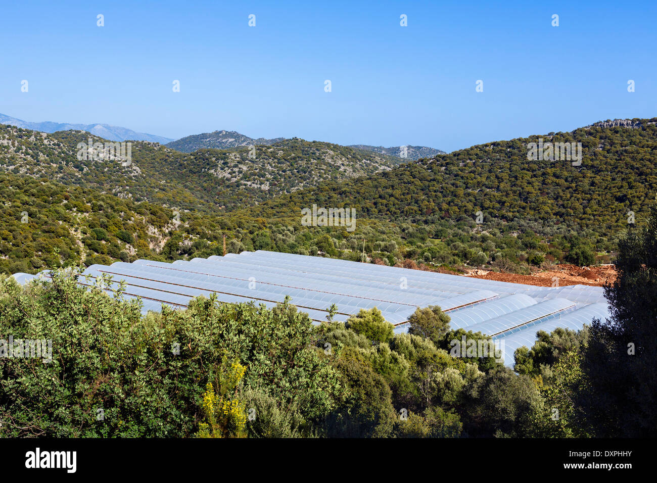 Polytunnels in the countryside near Demre, Antalya Province, Turkey - Stock Image