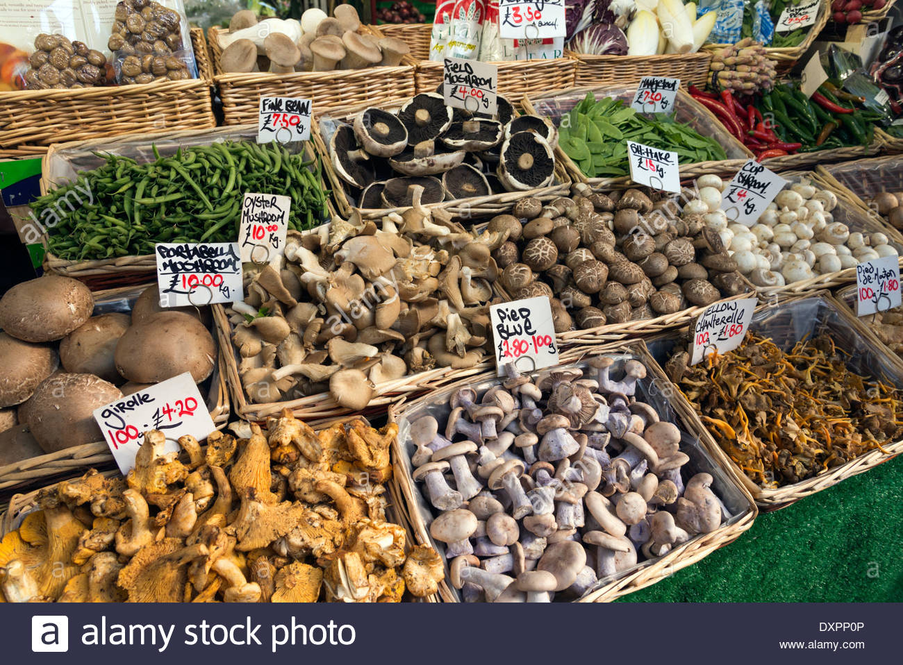 Varieties of mushrooms on a stall in Borough Market, London, England, UK - Stock Image