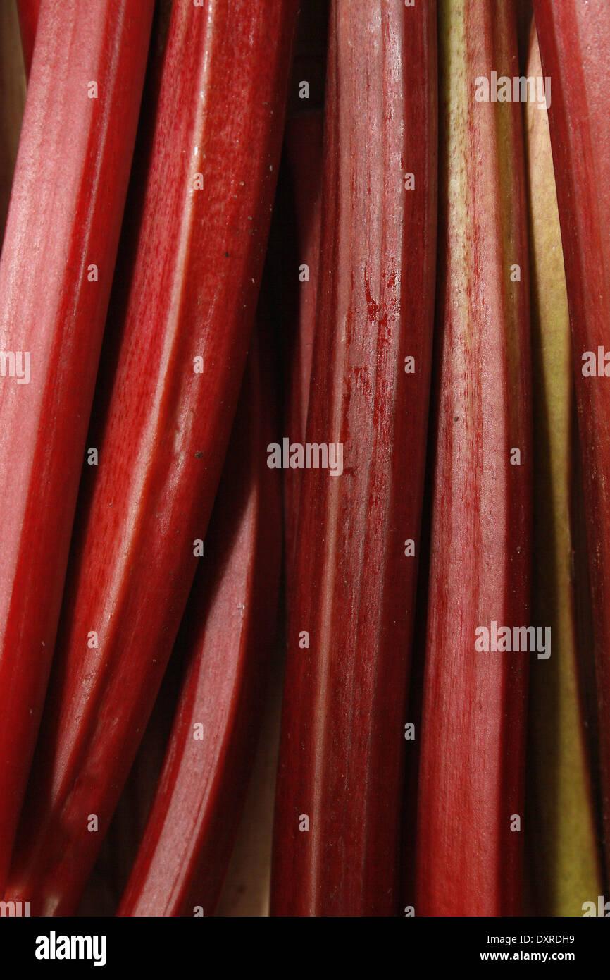 rhubarb stalks on chopping board Rheum rhabarbarum - Stock Image
