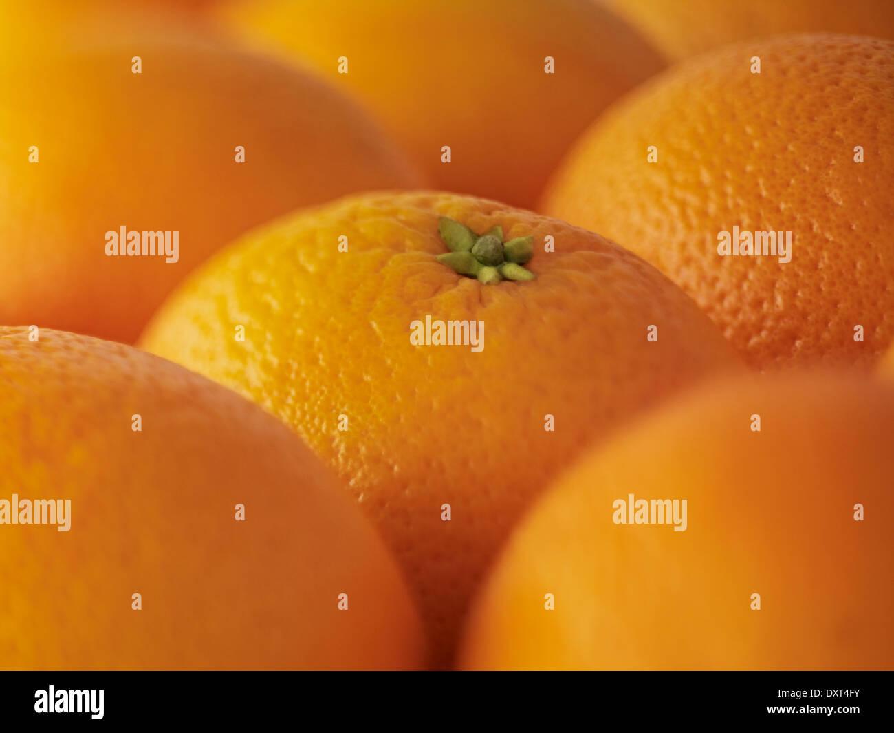 Extreme close up of oranges - Stock Image