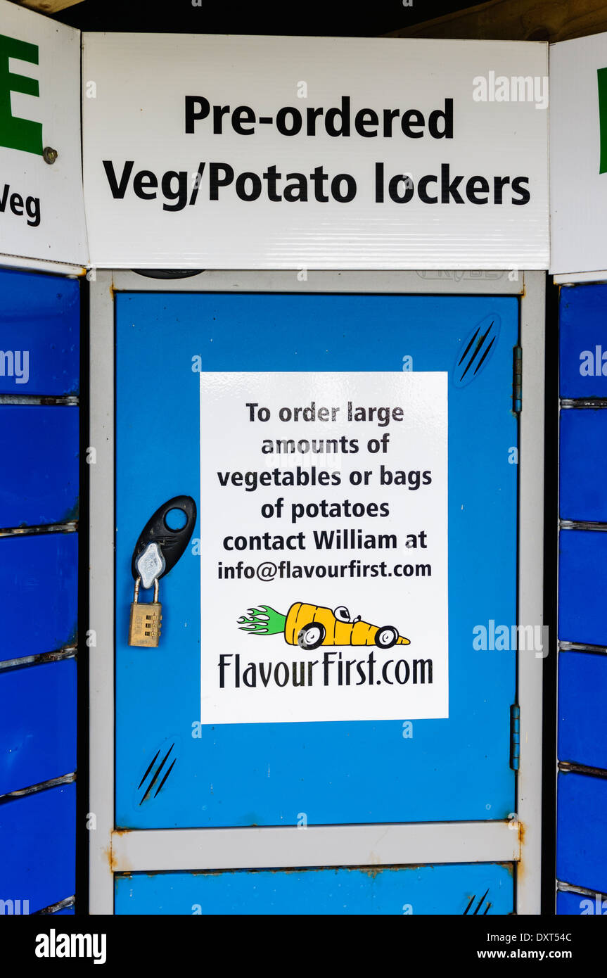 Locker for storing pre-ordered vegetables and potatoes - Stock Image
