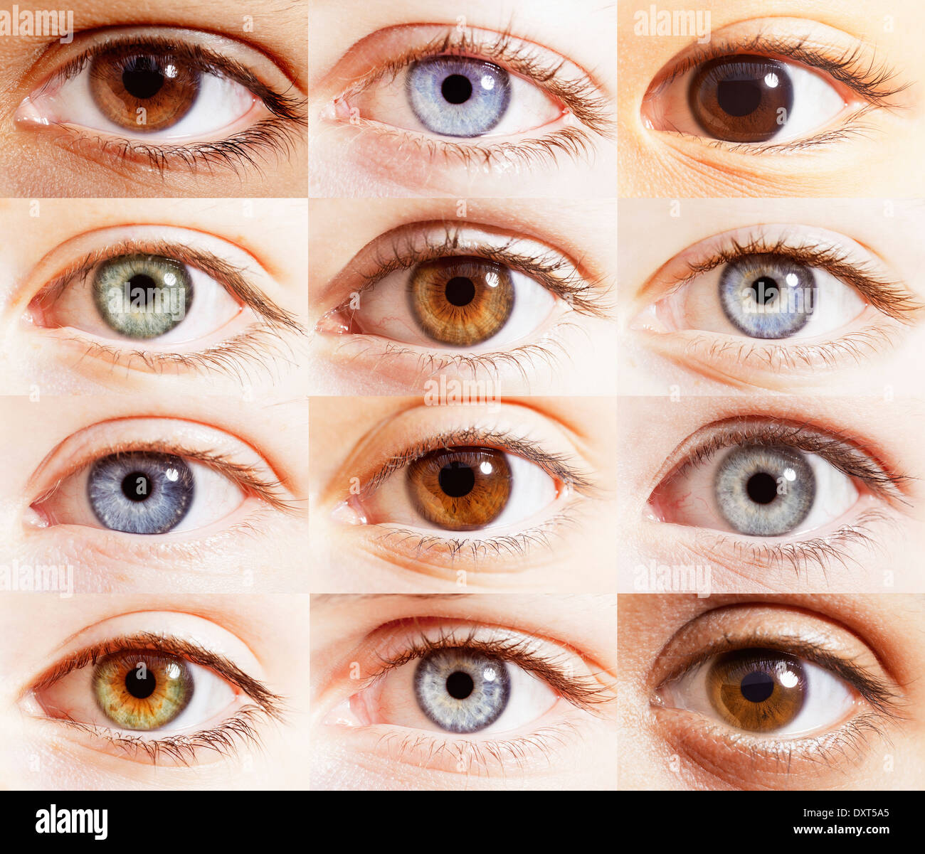 Extreme close up of digital composite of eyes - Stock Image