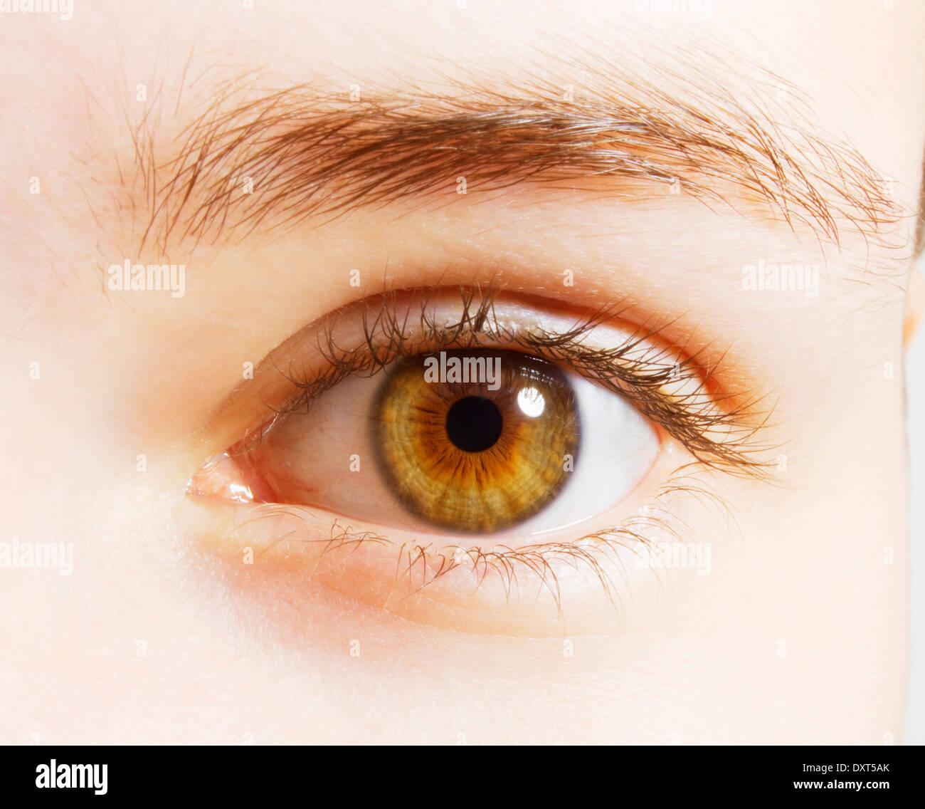 extreme close up of hazel eyes stock photo 68143227 alamy