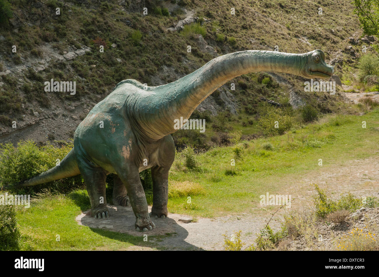 Real.size recreation model of Sauropod dinosaur made from fiberglass and concrete at the Valdecevillo palaeontological site, La Rioja, Spain. - Stock Image