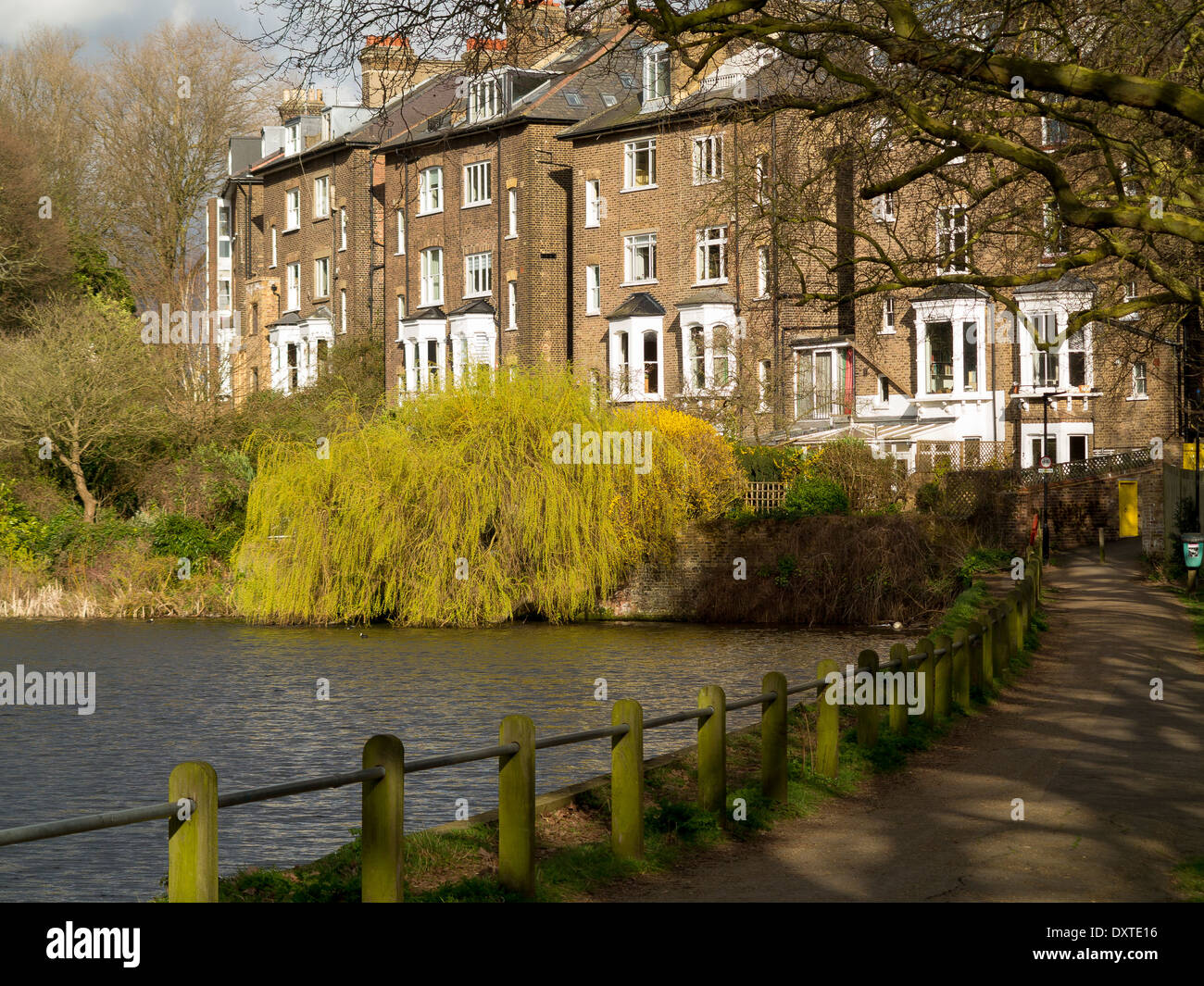 A pond on Hampstead Heath, London with homes on South Hill Park in the background - Stock Image
